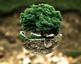 Warto żyć ekologicznie