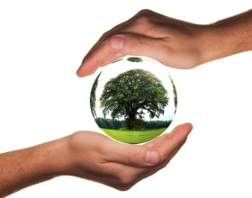 Ekologia popłaca. 6 przykładów oszczędności na byciu eko